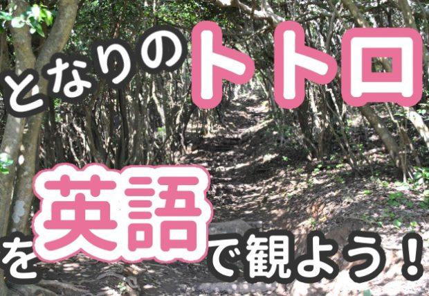 【となりのトトロ】の英語版DVDがめちゃくちゃオススメな件。