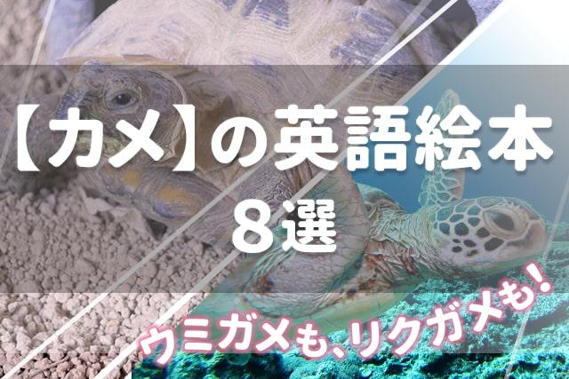【カメ】が出てくる英語絵本8選 ★ウミガメもリクガメも★