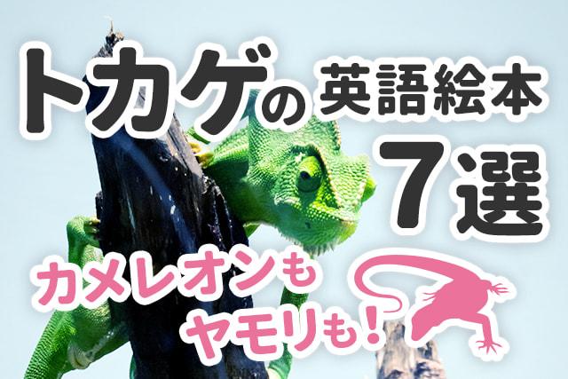 【トカゲ】や【カメレオン】が大好きなあなたへ ★英語絵本7選★