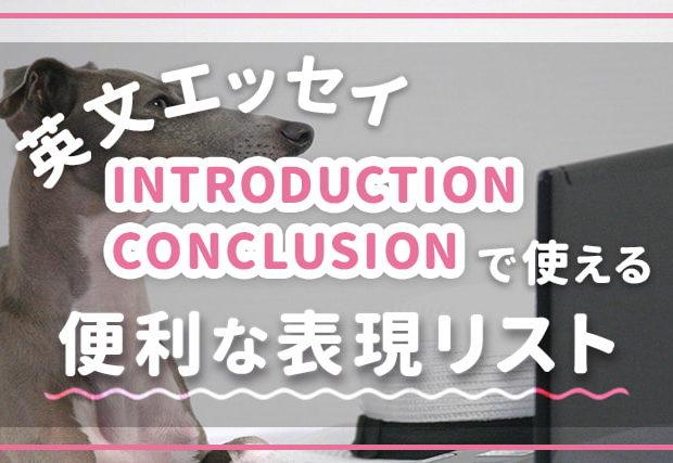エッセイライティング【introduction / conclusion】で使える便利な表現