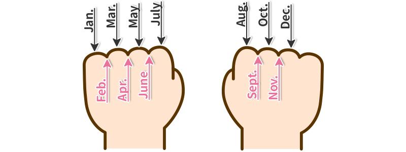 Knuckle Mnemonic
